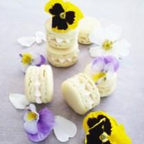 Artful Bakery Macarons