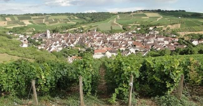 Cité des Vins de Bourgogne: Burgundy's Ambitious Network of Museums Gets Green Light