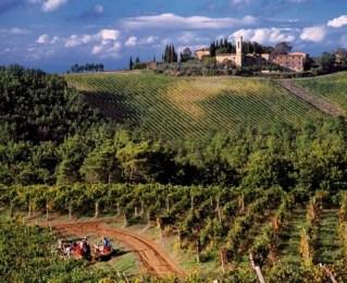 Isole e Olena Wines: Forward-Thinking from Traditional Tuscany