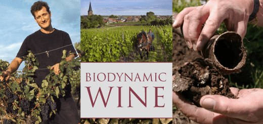 The Science Vs the Fiction Behind Biodynamic Wines - A Talk with Author Monty Waldin
