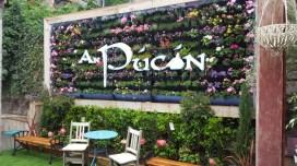 pucan-garden-900x506
