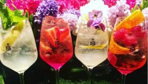 Spritz Cocktail Collectionno27shelbourne