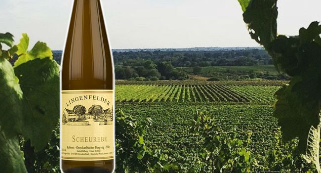 Discover Scheurebe, Riesling's Lovable Cousin Shines in this Elegant German Wine