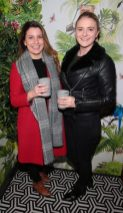 Deirdra McBeth and Avril Gilligan pictured at The Monkey Haus hosted by Alexander Stein Founder of Monkey 47 at The Wilde Merrion Square, Dublin.Pic Brian McEvoy