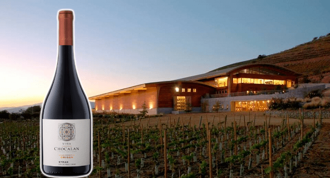 A Velvety Syrah at a Great Value to Treat your Palate without Breaking the Bank