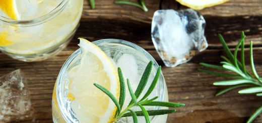 Great News! Ireland is Getting a Massive Gin Festival this Spring