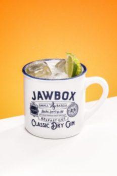JawBox-Perfect-Serve7604-Edit