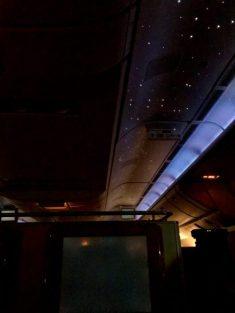 Emirates Business Class1