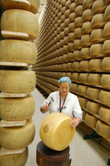 Parmesan cheese factory7