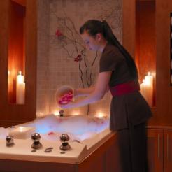 hydro-bath-model