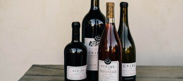20 Questions with Andrew Mariani of Scribe Winery
