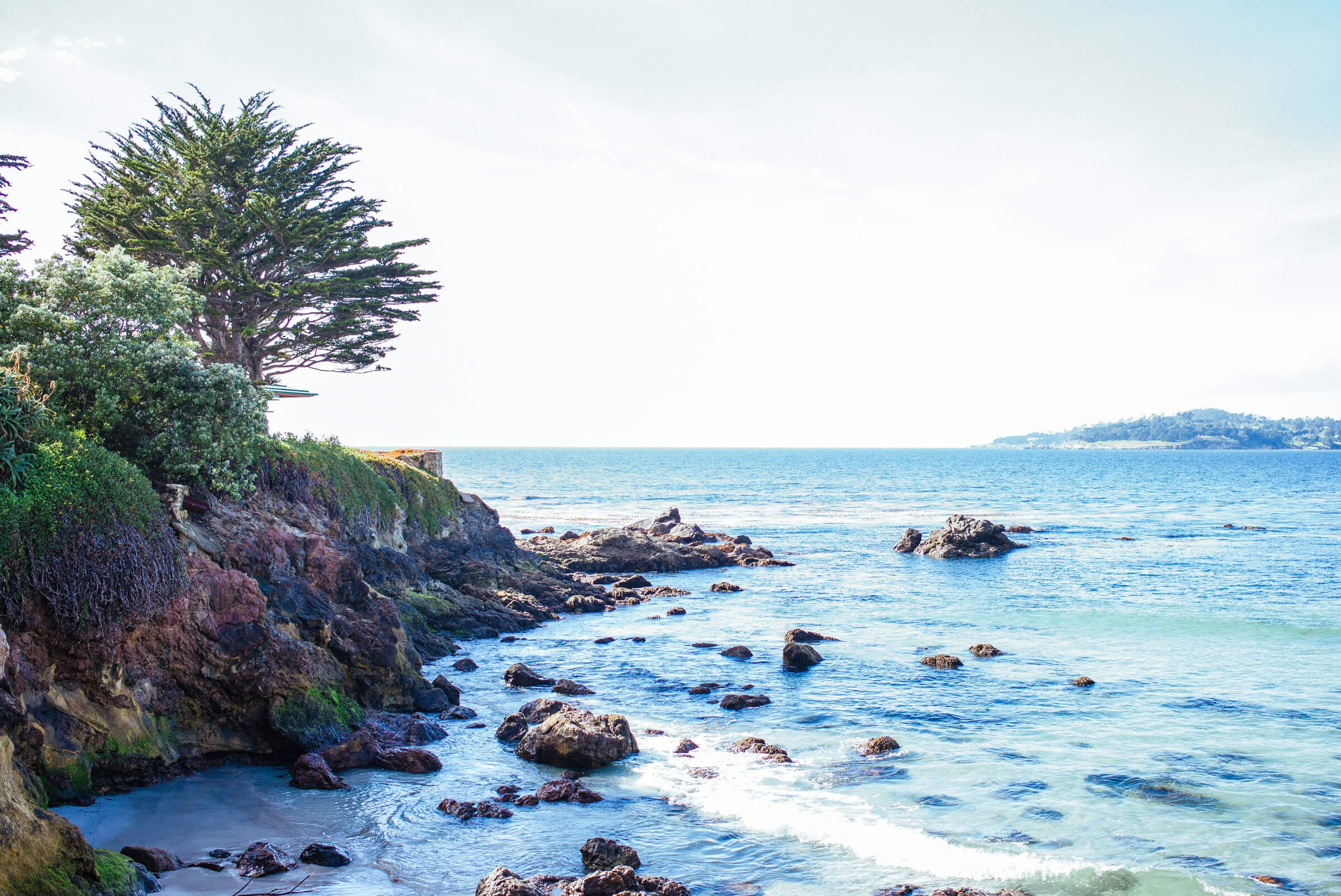 The Taste SF visits Carmel Beach, it has white sands and is dog friendly