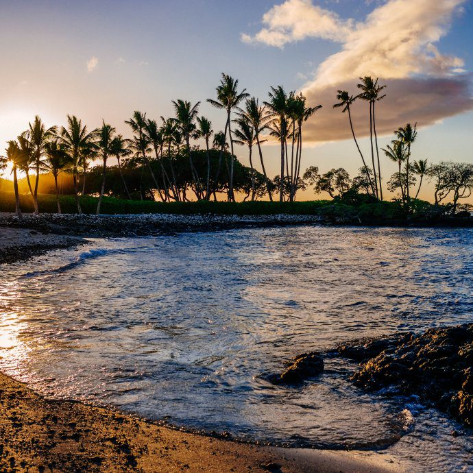 Visit the big island of Hawaii. We're sharing the best restaurants, things to do, and tips for your visit on thetastesf.com #travel #hawaii