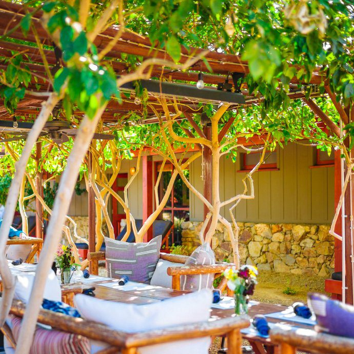 You'll find the best outdoor dining in Palm Springs seated under the orange trees at this hidden gem the Barn Kitchen at Sparrows Lodge in Palm Springs, thetastesf