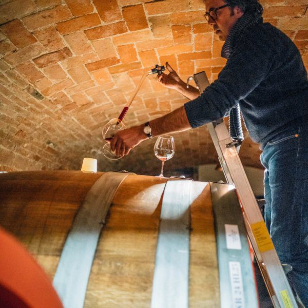 Do you love Barolo wine? Winemaker Mario Fontana gives us a barrel tasting of his traditional and natural wine in Piedmont Italy