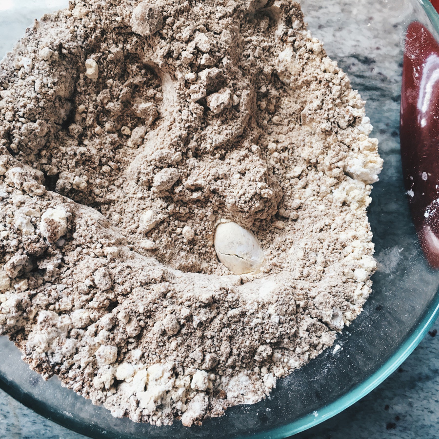 Chai Spice Upside-Down Plum Cake