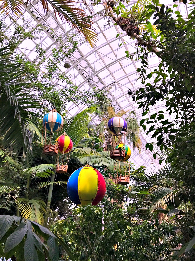 The Crystal Bridge Conservatory OKC