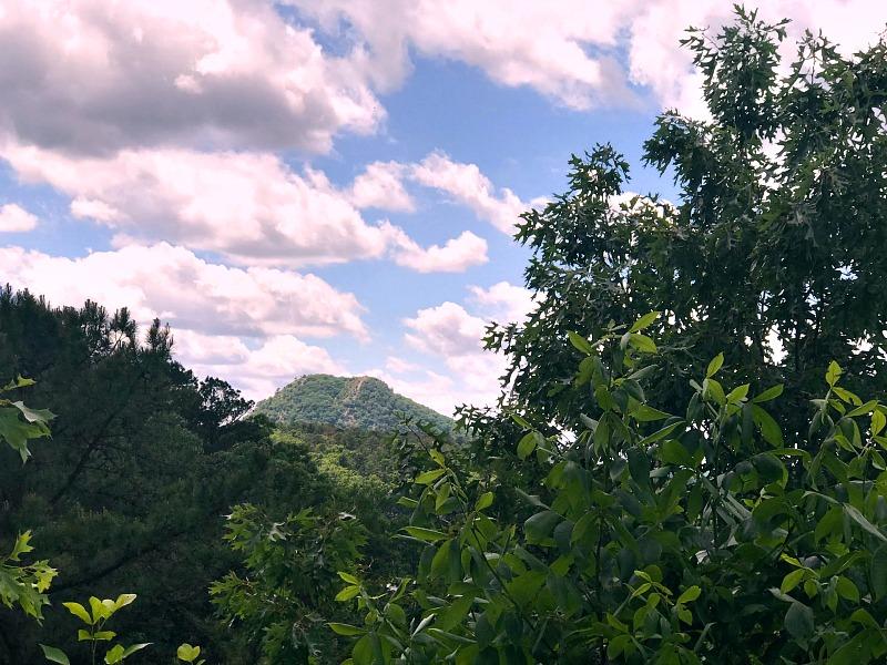 Pinnacle Mountain Little Rock