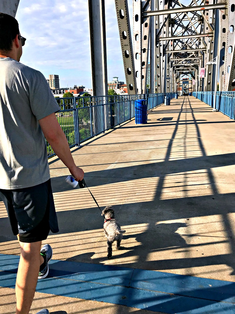 walking Junction Bridge