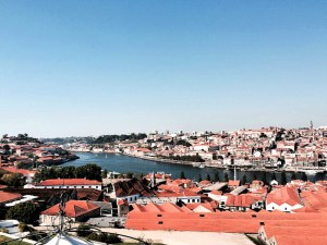 view of Porto from Yeatman Hotel