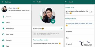 whatsapp with status feature