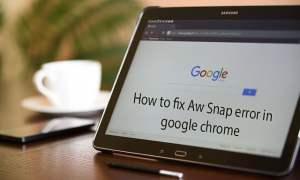 Fix aw snap error
