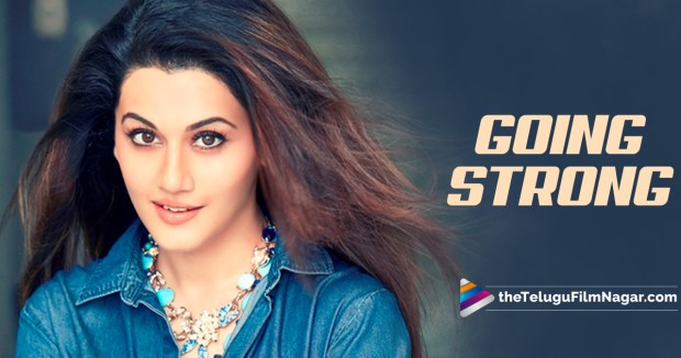 Taapsee Pannu Next Movies