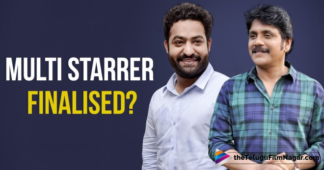 Nagarjuna And Jr NTR Roped In For Multi Starrer,Telugu Filmnagar,Telugu Movie Updates 2017,Akkineni Nagarjuna And Jr NTR Multi Starrer,Nagarjuna Latest News,Jr NTR Latest News