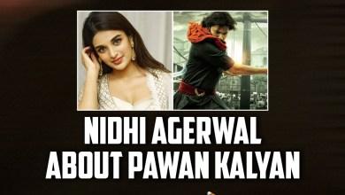 Hari Hara Veera Mallu: Nidhi Agerwal About Pawan Kalyan