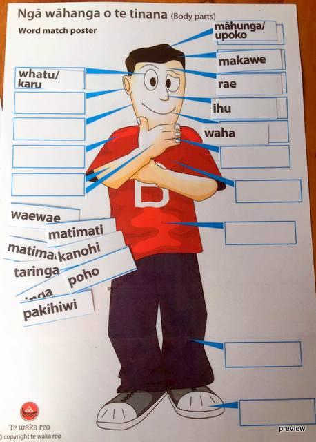 Ngā wāhanga poster