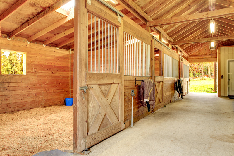 This Fact Sheet Provides An Over View Of Some Basic Stall Features For A Typical 1000 Pound Horse You Should Adjust The Dimensions Significantly