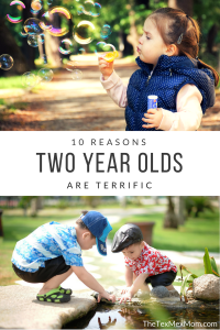 10 Reasons Two Year Olds are Terrific