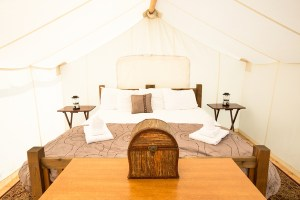 Glamping suite