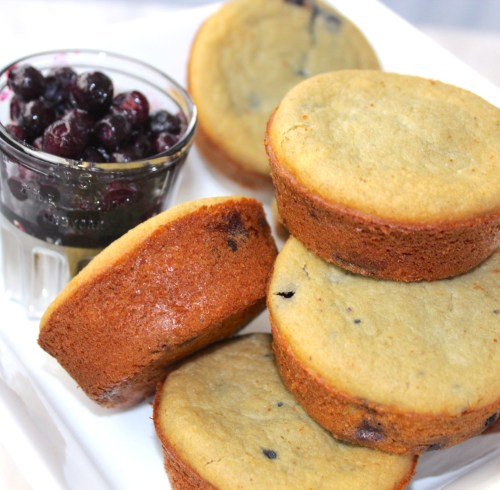 Blueberry Oat Coconut Protein Muffins