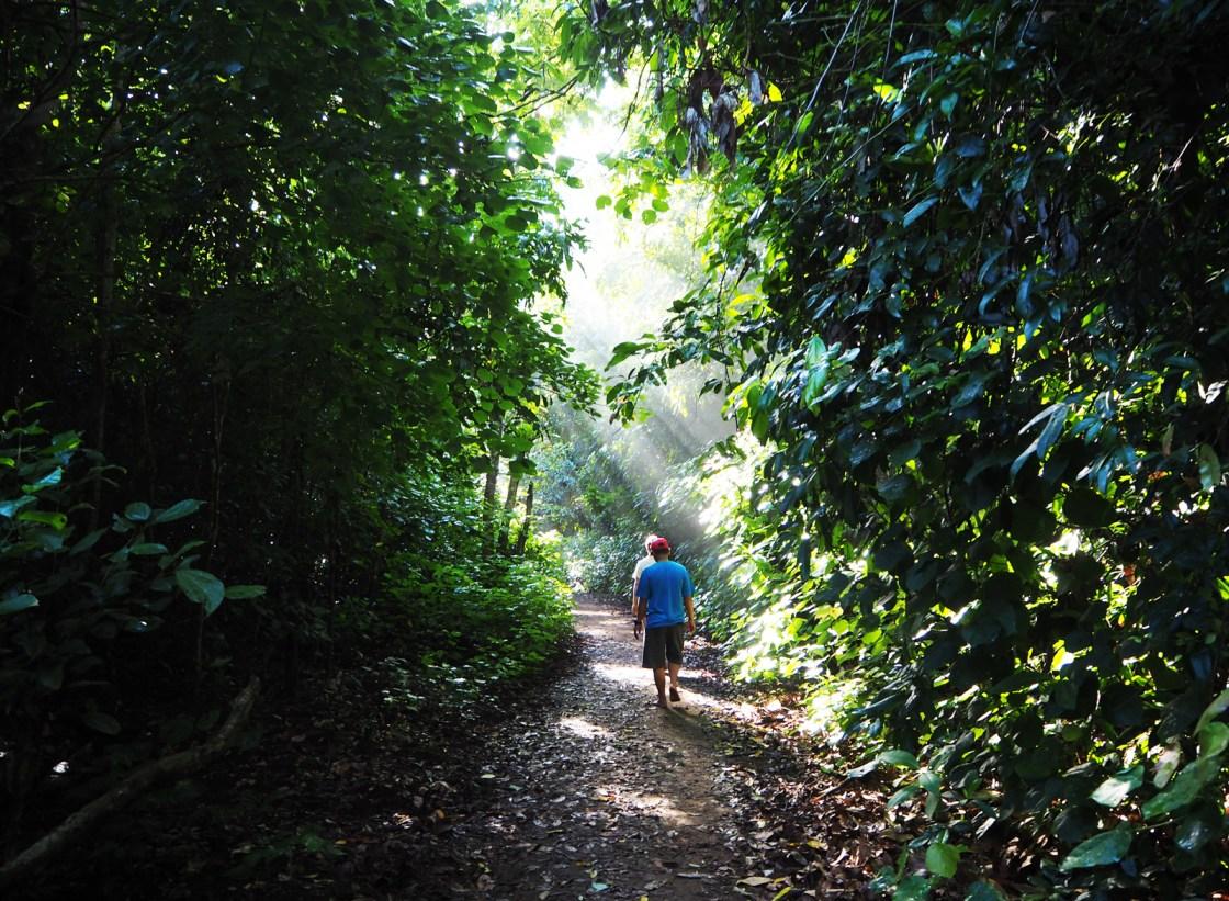 Een avontuurlijke week op Oost-Java deel 2: Sukamade