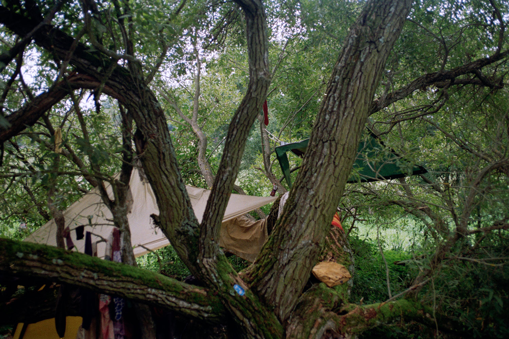 Tarps of our camp under the willow trees, Hungary.