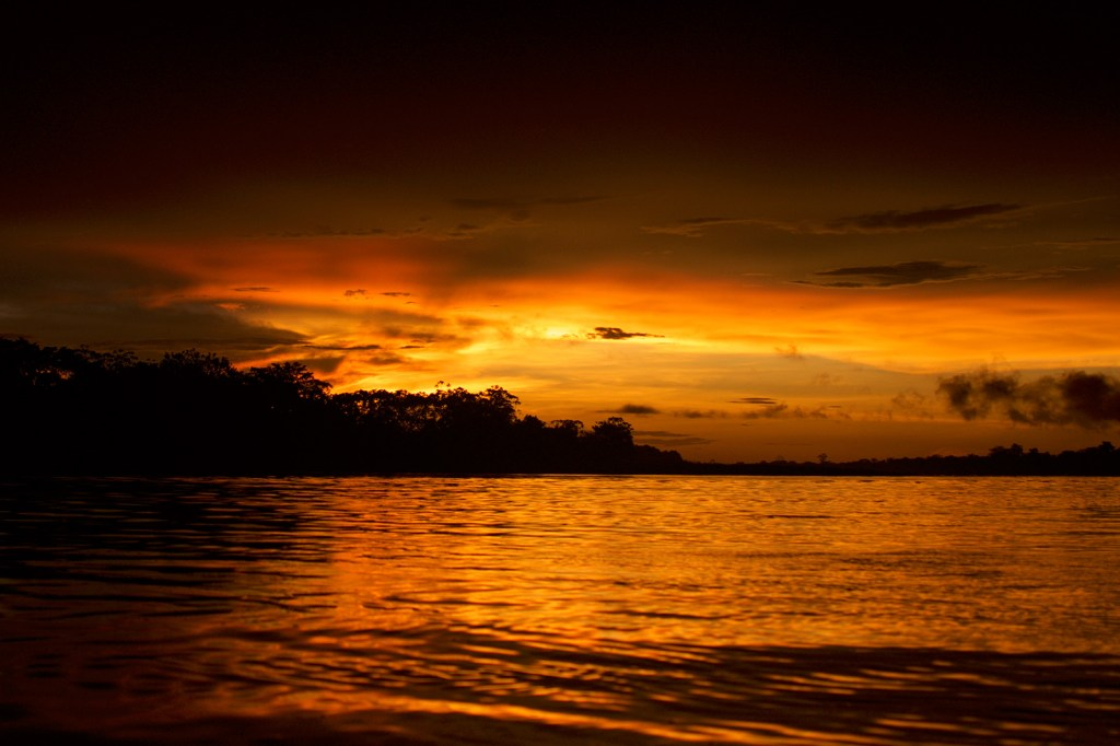 Spirit-in-Chief's Letter FROM THE PERUVIAN AMAZON