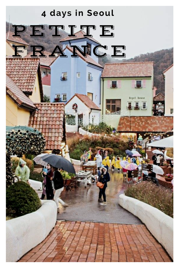 Day trip in Nami Island and Petite France