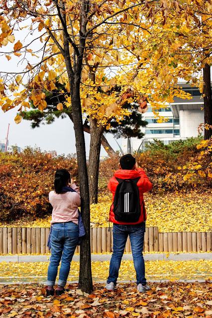 4 Days Seoul Itinerary