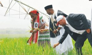 L-R: Minister Of Water Resources, Mrs Sarah Ochekpe, Vice President Namadi Sambo and Managing Director, Salini Construction Company, Dr Piero Capitanio, inspecting  rice farm, during the inauguration of Gurara Irrigation Project at Kachia Local Government Area of Kaduna State, recently.