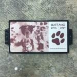 Pet Plaque