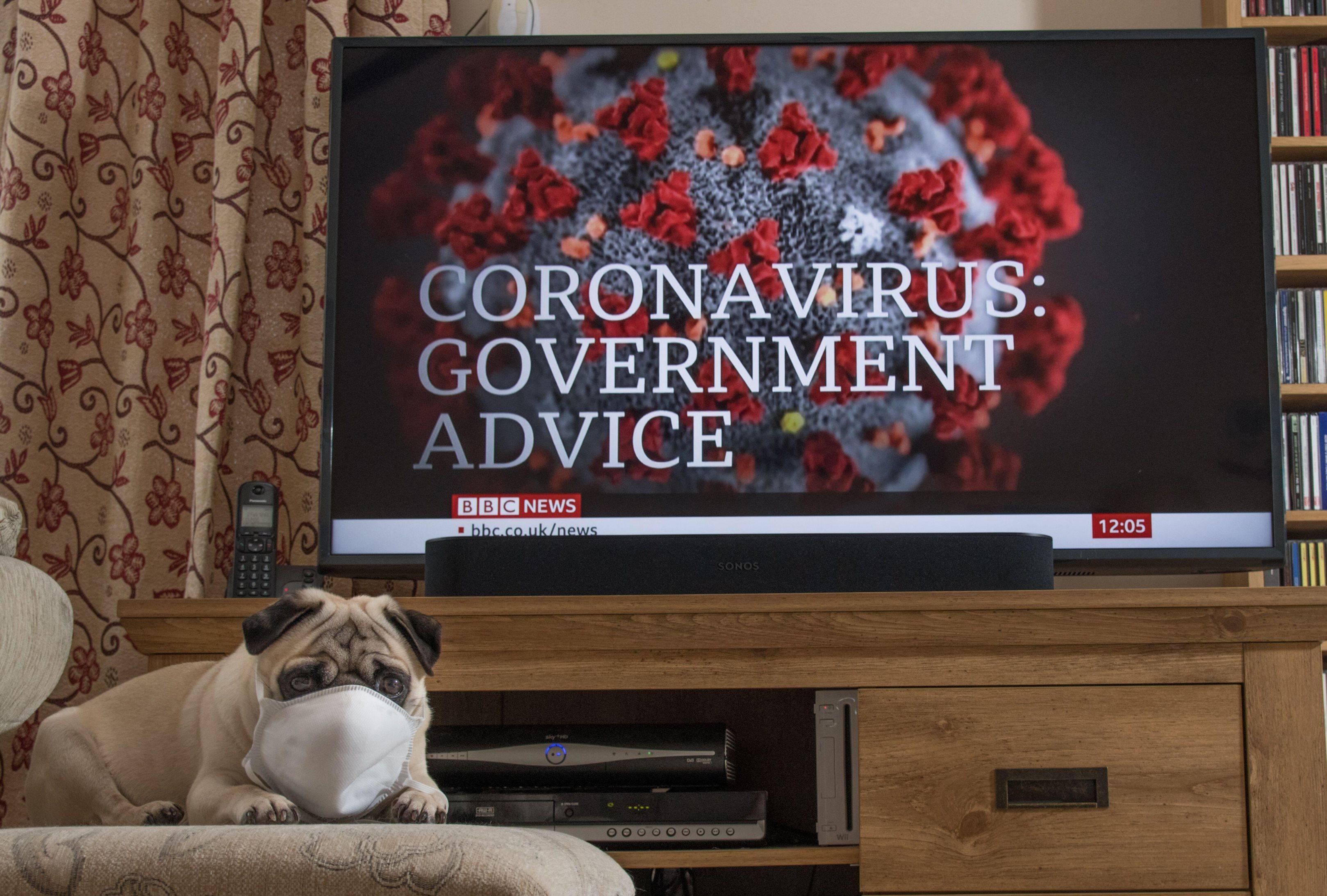 How dangerous is coronavirus? UK threat level, symptoms and advice ...