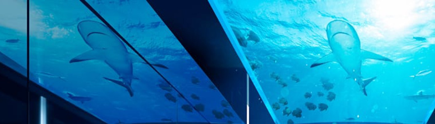 Underwater Hotel In Maldives And Free Flights Ba