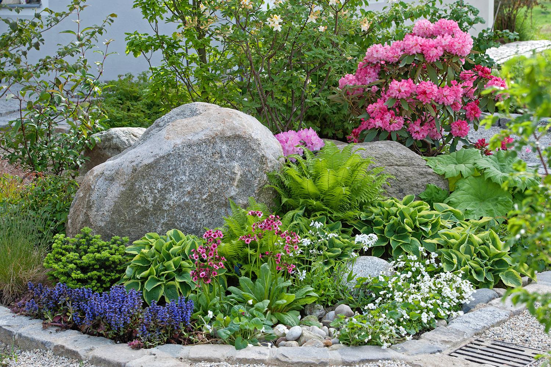 Joe Swift: How to create a modern rock garden