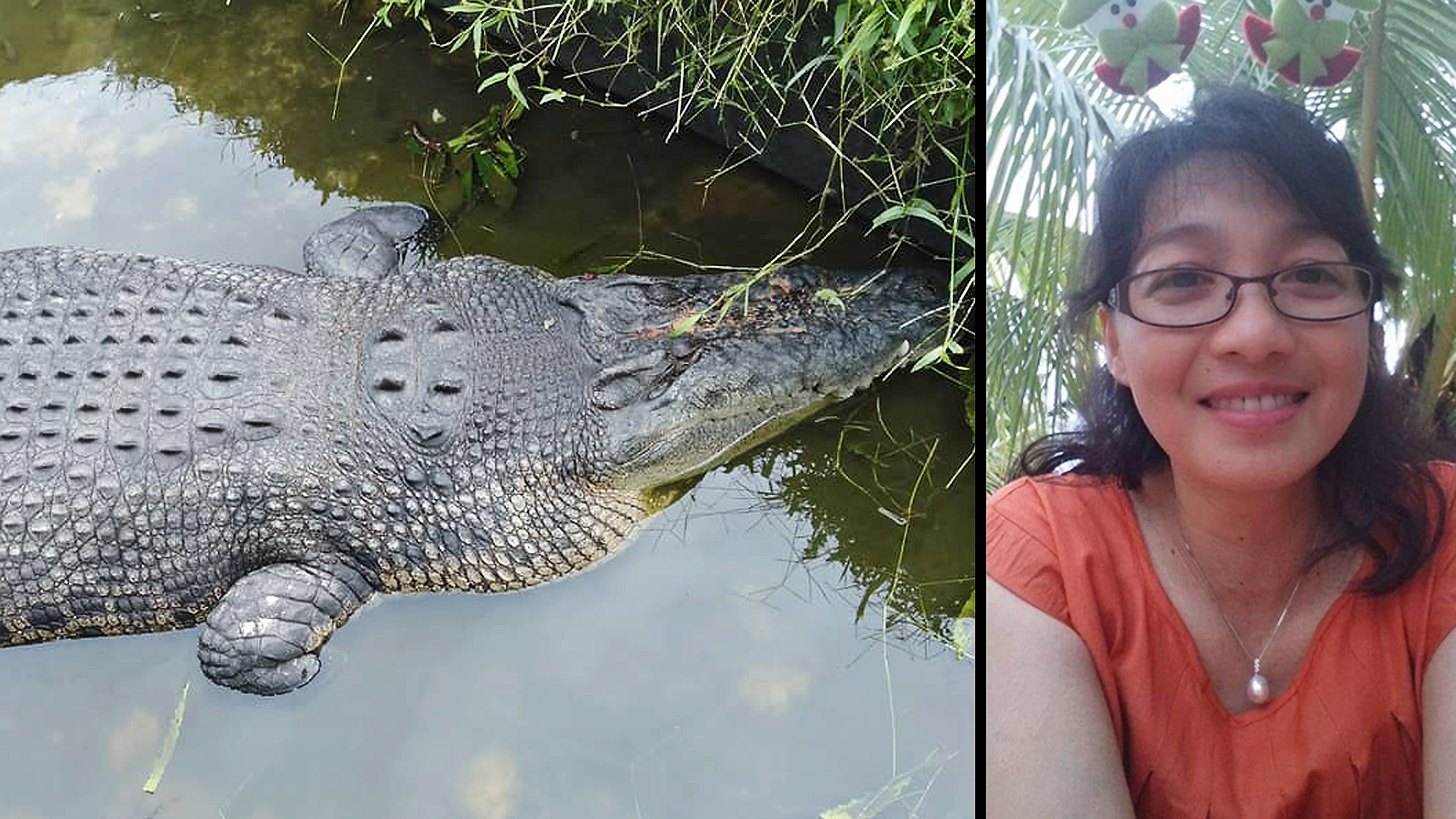 The Crocodile Leapt Up And Dragged Deasy Tuwo Into Its Pool As She Fed It