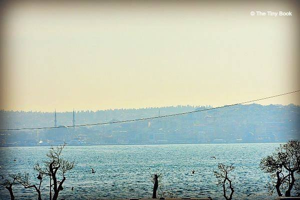 In the distance, the minarets of Ortaköy Camii next to the sea.