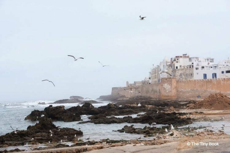 Coastal view from the port. Esaouira, Morocco-