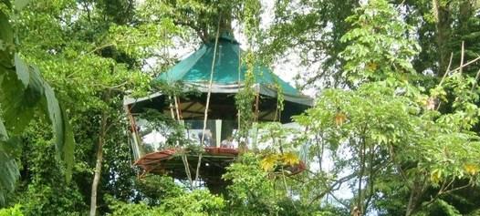 Panorama of the amazing treehouse