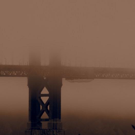 The Golden Gate Bridge, seen from Chrissy Field