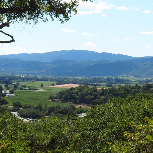 Rutherford Ranch Winery, Napa Valley